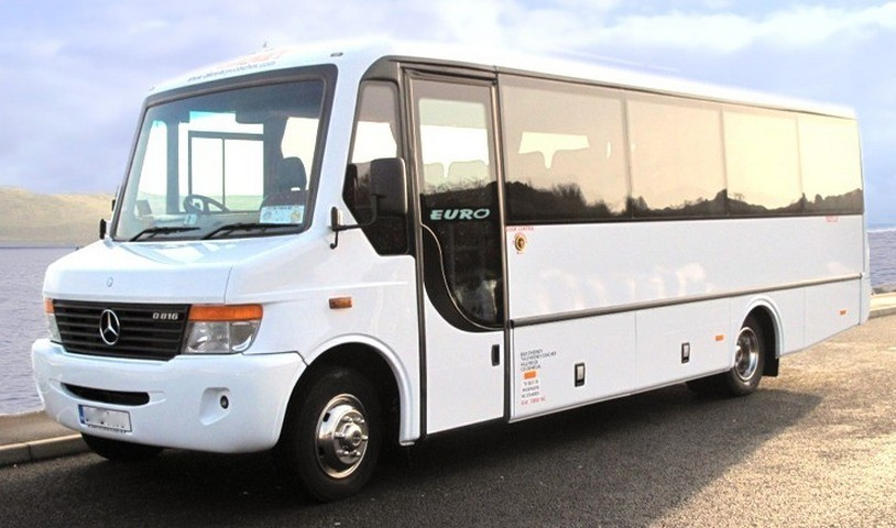Buses Minibuses And Vans For 19 29 People Rental And